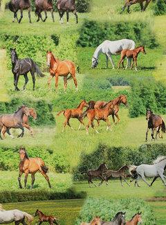 Paarden groen - digitale print