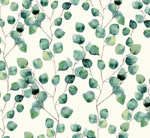 Decostoffen Eucalyptus half panama