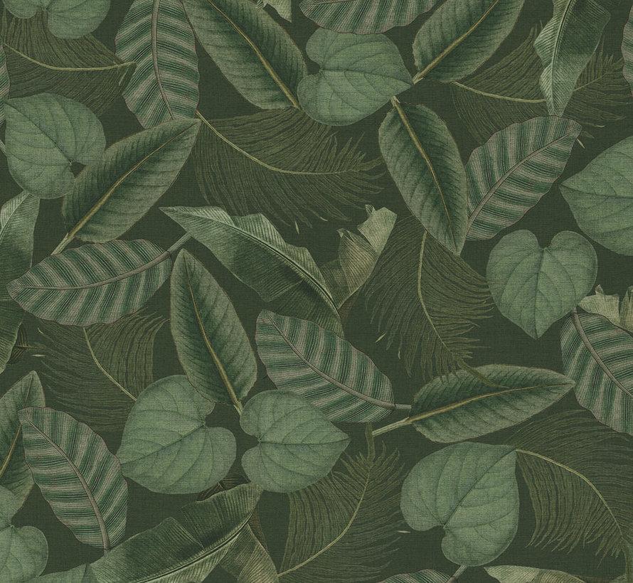Groene bladeren - outdoor