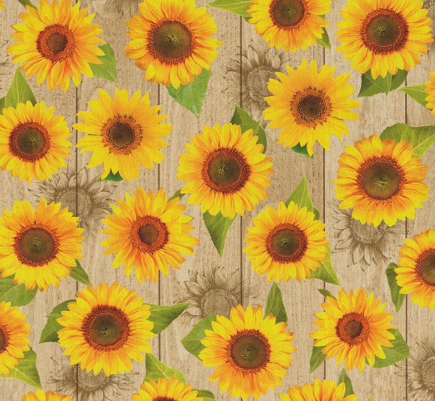 Zonnebloemen - outdoor