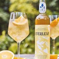 Alcoholvrije en botanische drank (50cl)