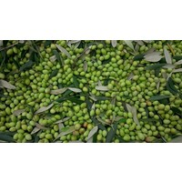 Green Days biologische tapenade van groene olijven (212ml)