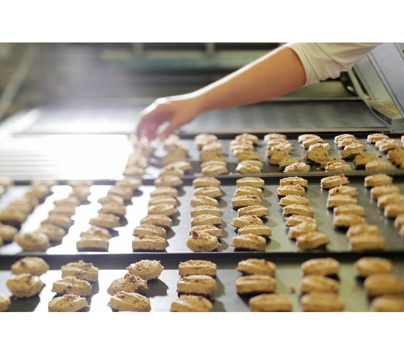Sylvain Speculoos glutenvrije koekjes 100g