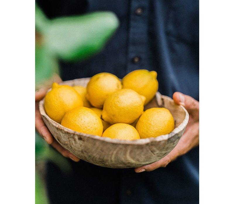 Handgemaakte Grapefruit tonic (200ml)