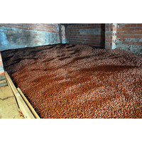 Tray (12 x 250g) Crema Gianduia di Nocciola I.G.P.  - Milk chocolate