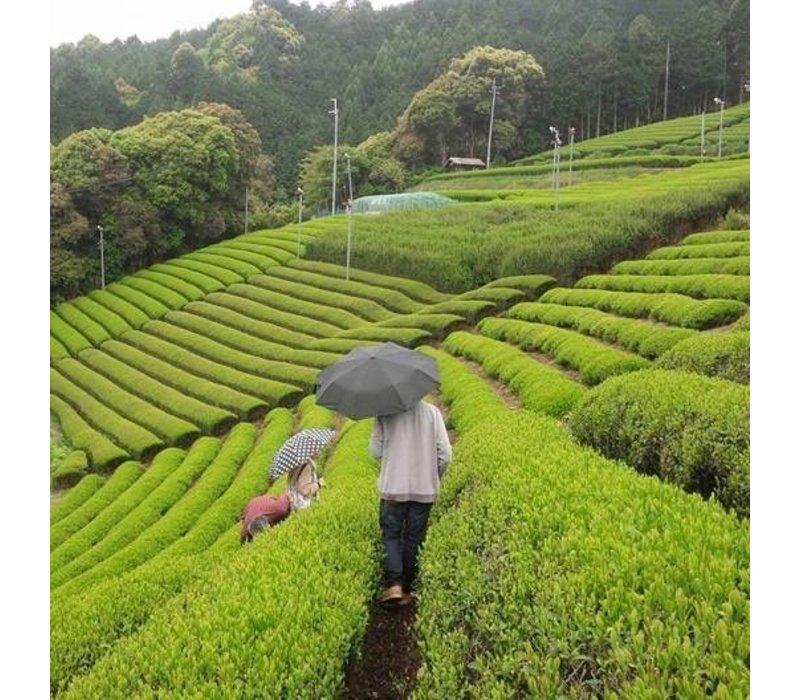 Bamboe lepel voor matcha