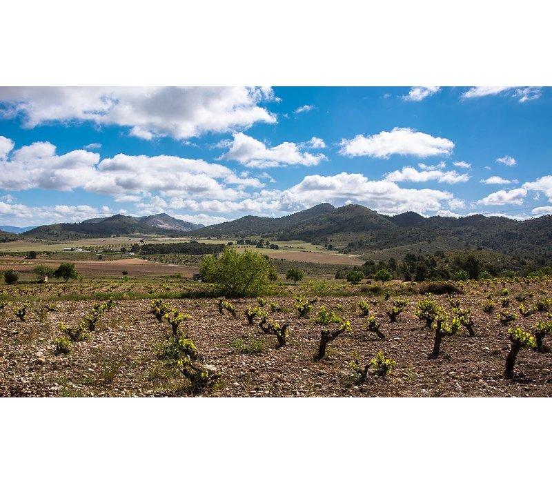 Karaktervolle Spaanse rode wijn GOLD (75cl) - El Goru
