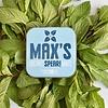Max's Organic Mints Vegane BIO-Minze SPEARMINT (35g)