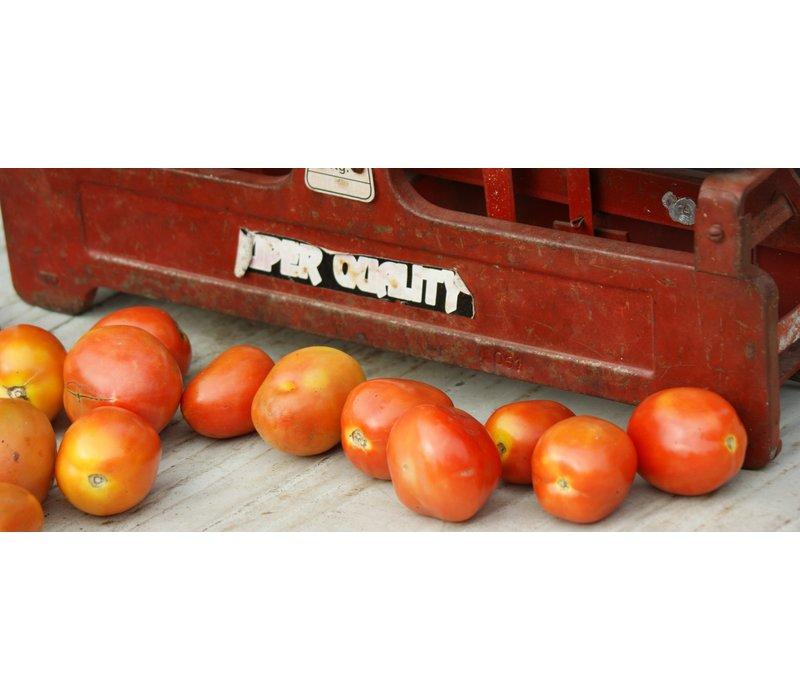 Lady in Red biologische dip van gedroogde tomaten (120ml)