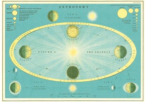 Cavallini Cavallini - Astronomy - Wrap/Poster