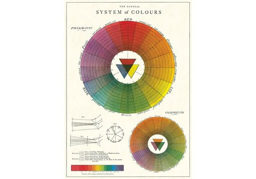 Cavallini Cavallini - Color Wheel - Wrap/Poster