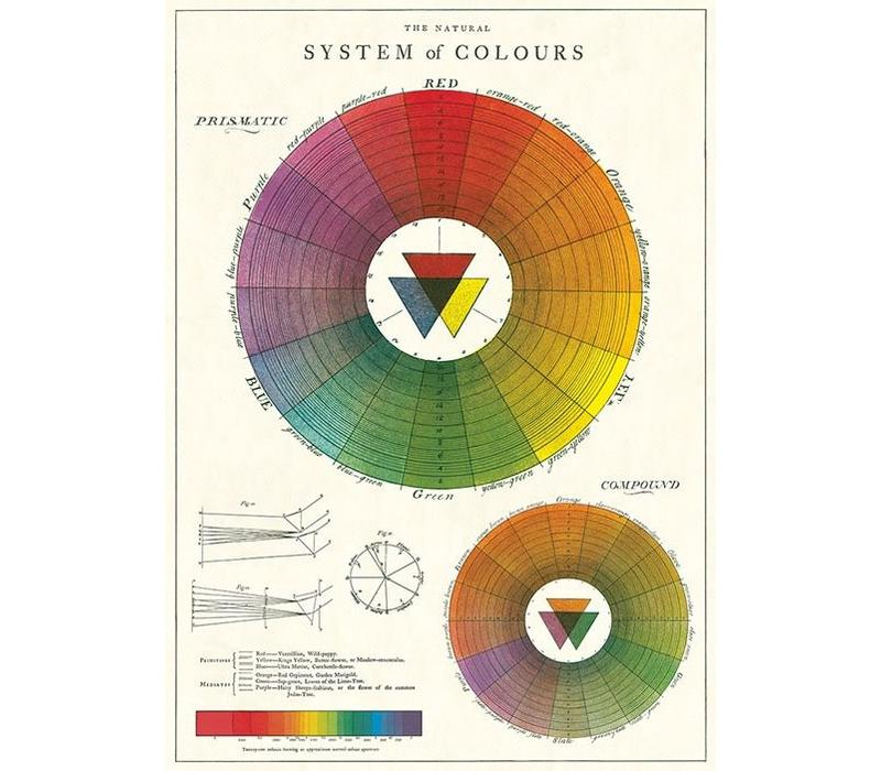 Cavallini - Color Wheel - Wrap/Poster