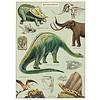 Cavallini Papers & Co Cavallini - Dinosaurus - Wrap/Poster