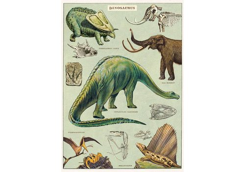 Cavallini Papers & Co Cavallini - Dinosaurus - Wrap/Poster