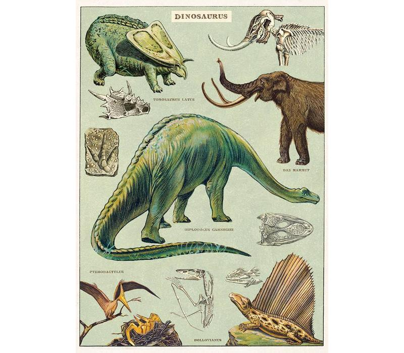 Cavallini - Dinosaurus - Wrap/Poster