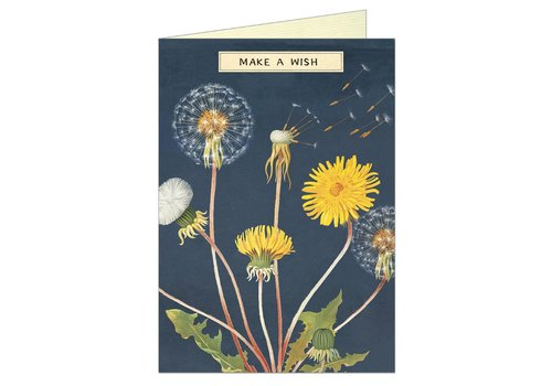 Cavallini Papers & Co Cavallini - Make a Wish - Greeting Card