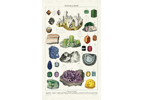 Cavallini Papers & Co Cavallini - Mineralogie - Tea Towel