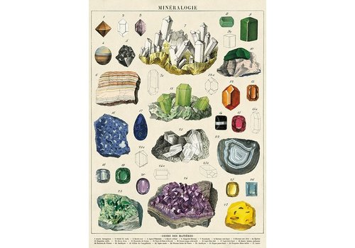 Cavallini Papers & Co Cavallini - Mineralogie - Wrap/Poster