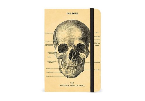 Cavallini Papers & Co Cavallini - Skull - Notebook with elastic closure