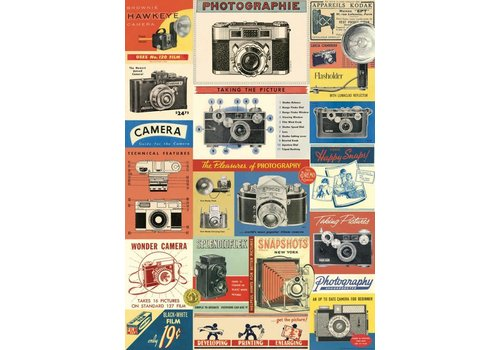 Cavallini Papers & Co Cavallini - Vintage Cameras - Wrap/Poster