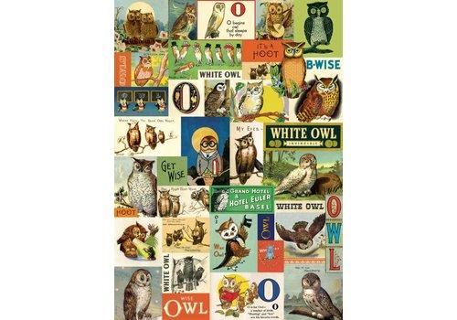 Cavallini Cavallini - Vintage Owls - Wrap/Poster