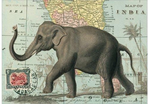 Cavallini Papers & Co Cavallini - Elephant - Wrap/Poster