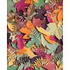 Little Ray of Sunflower Little Ray of Sunflower - Autumn Leaves - Print
