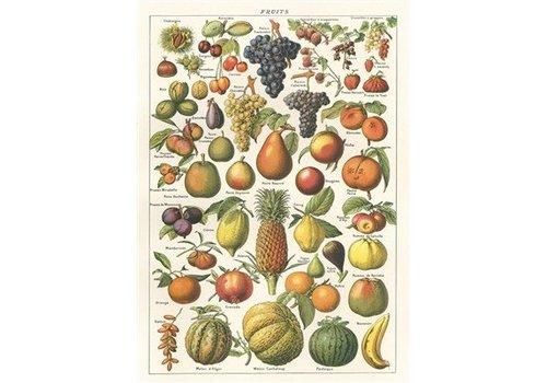 Cavallini Papers & Co Cavallini - Fruit Wrap/Poster