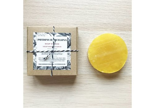 Potions Potions - Hawaiian - Soap Sponge