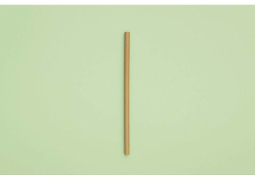 SUP - Stop Using Plastic SUP - Individual Bamboo Straw