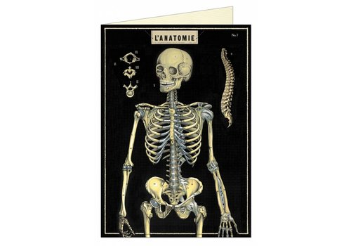 Cavallini Papers & Co Cavallini - Skeleton - Greeting Card