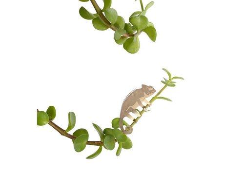 Another Studio Another Studio - Plant Animal - Chameleon