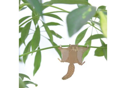 Another Studio Another Studio - Plant Animal - Flying Squirrel