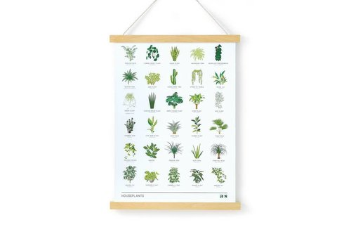 Another Studio Another Studio - House Plant Print