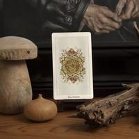 Uusi - Pagan Otherworlds Tarot