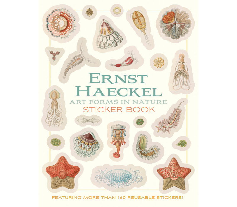 Pomegranate - Ernst Haeckel: Art Forms In Nature - Sticker Book