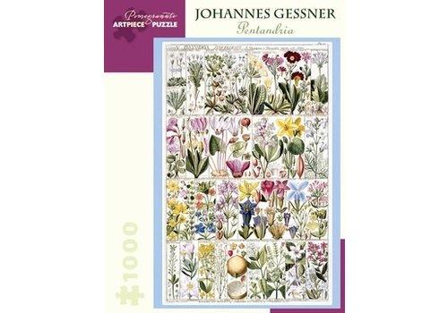 Pomegranate Pomegranate - Johannes Gessner: Pentandria - 1000 Pieces Puzzle