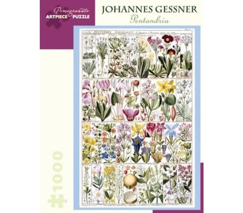 Pomegranate - Johannes Gessner: Pentandria - 1000 Pieces Puzzle