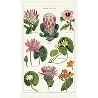 Cavallini - Tropical Plants - Tea Towel