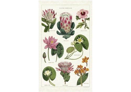 Cavallini Papers & Co Cavallini - Tropical Plants - Tea Towel