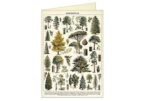 Cavallini Papers & Co Cavallini - Arboretum - Greeting Card