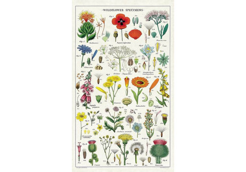 Cavallini Papers & Co Cavallini - Wildflowers - Tea Towel