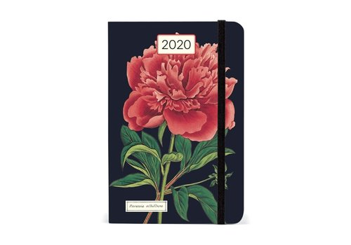 Cavallini Papers & Co Cavallini - 2020 Weekly Planner - Botanica