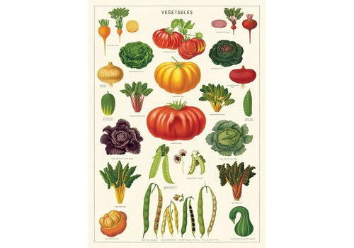 Cavallini Papers & Co Cavallini - Vegetable Garden - Wrap/Poster