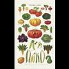 Cavallini Papers & Co Cavallini - Vegetable Garden - Tea Towel