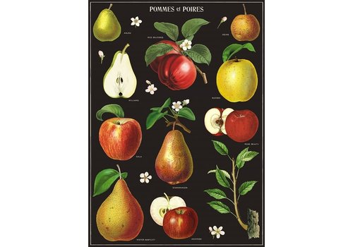 Cavallini Papers & Co Cavallini - Apples & Pears - Wrap/Poster