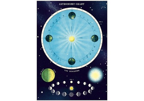 Cavallini Papers & Co Cavallini - Astronomy Chart - Wrap/Poster