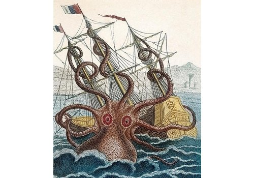 Archivist Gallery Archivist Gallery - Giant Octopus - Greeting Card