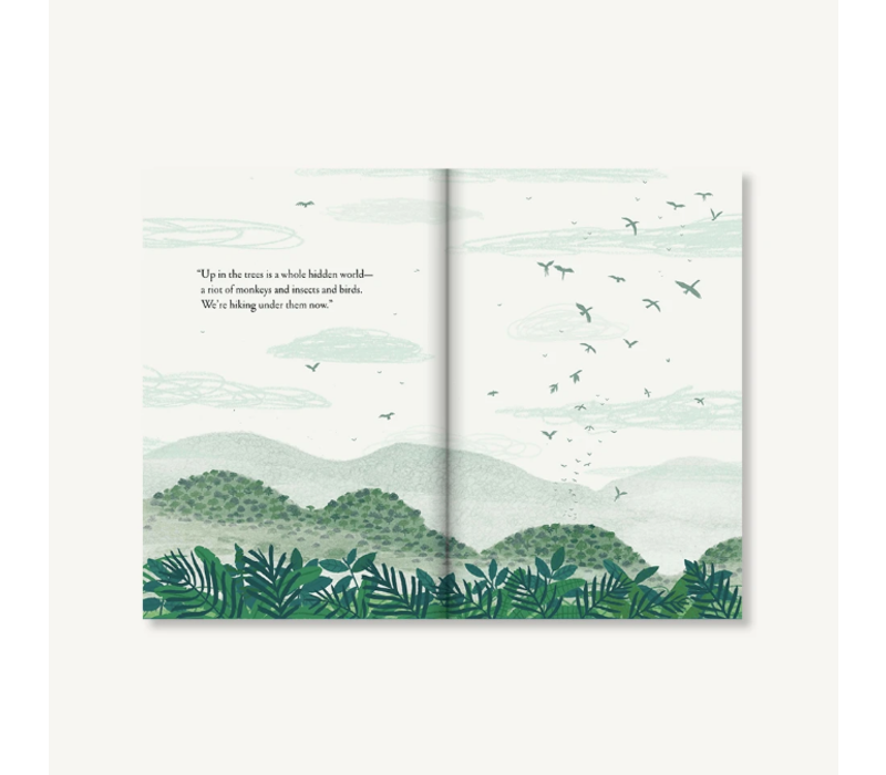 Chronicle Books - Over and Under the Rainforest