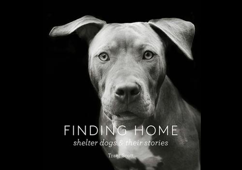 Princeton Architectural Press Princeton Architectural Press - Finding Home